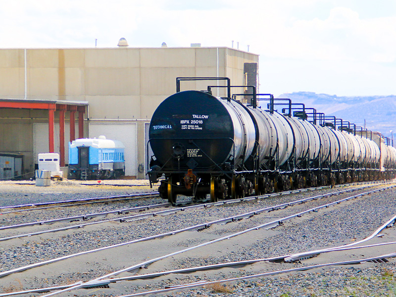 Rail Yard with oil tankers parked on track