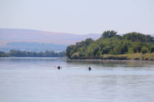 Two people kayaking on the Columbia River